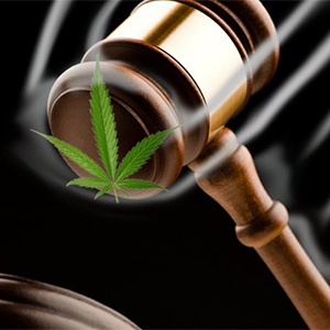 Marijuana-Judge-gavel