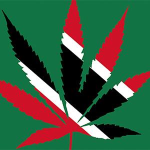 Cannabis_TTedit2