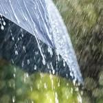 The-Rainy-Season-and-Umbrella